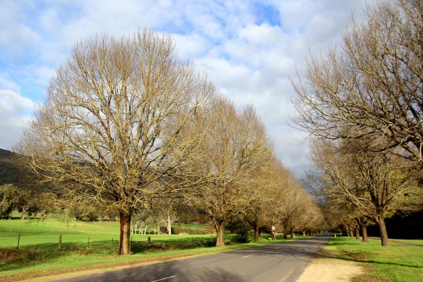morses creek road