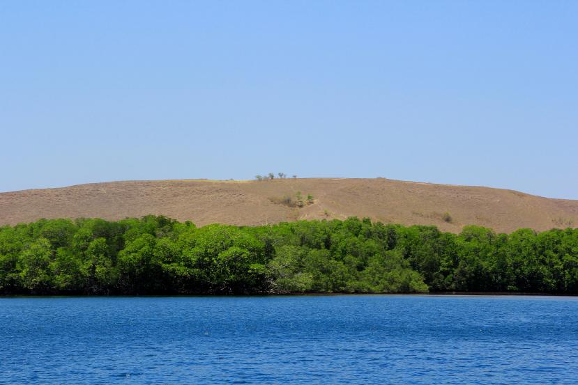 rinca island layered landscape