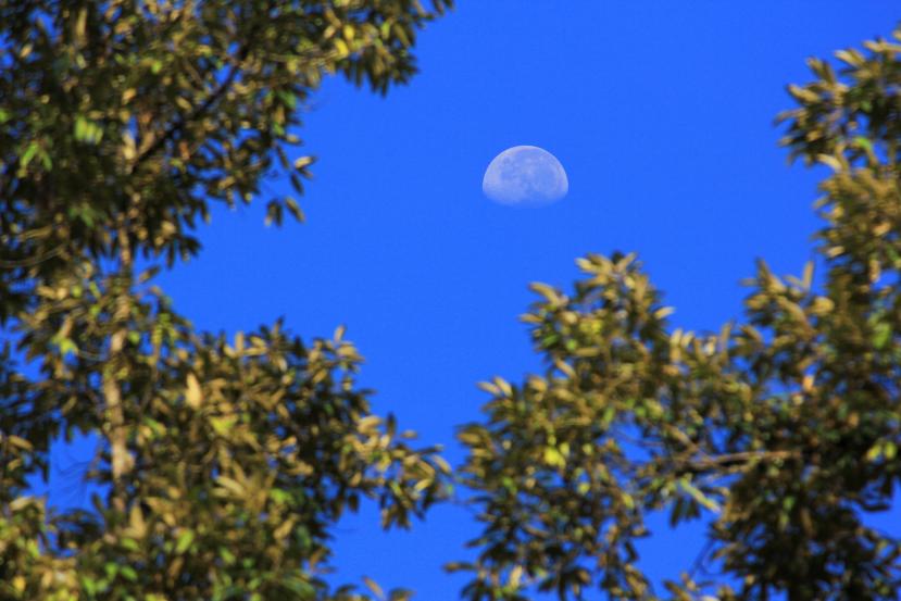 moon frame